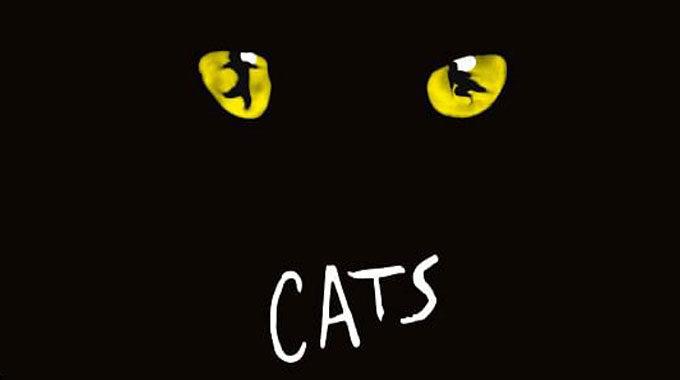 Zusatztermin Für Cats!